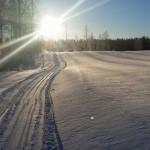 skidor_1