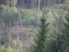 bymella-2012-belsbo-dagen-51